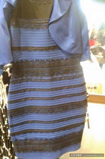 這件洋裝到底是藍黑色還白金色